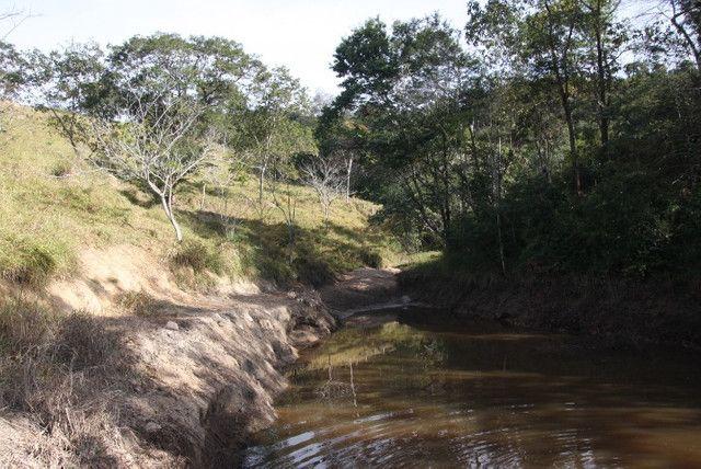 Terreno de 12 hectares em Fortuna de Minas - Foto 4