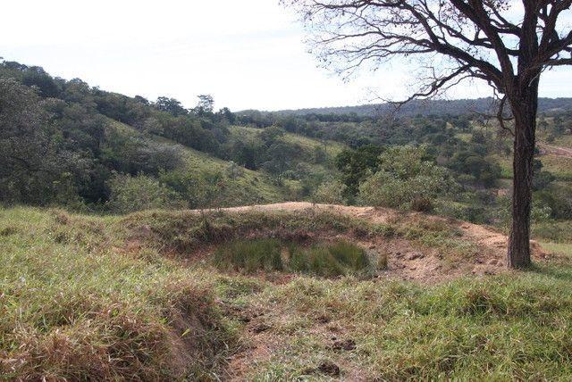 Terreno de 12 hectares em Fortuna de Minas - Foto 8