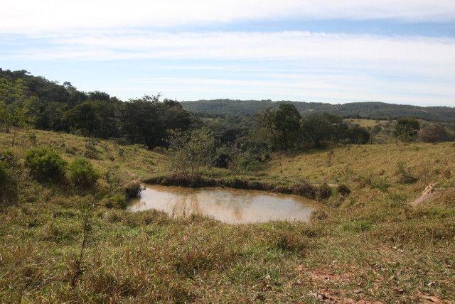 Terreno de 12 hectares em Fortuna de Minas - Foto 6