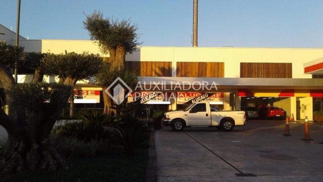 Loja comercial para alugar em Vila ipiranga, Porto alegre cod:242289 - Foto 5