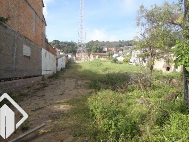 Terreno para alugar em Tristeza, Porto alegre cod:228903 - Foto 3