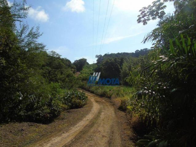 Fazenda antonina - Foto 20