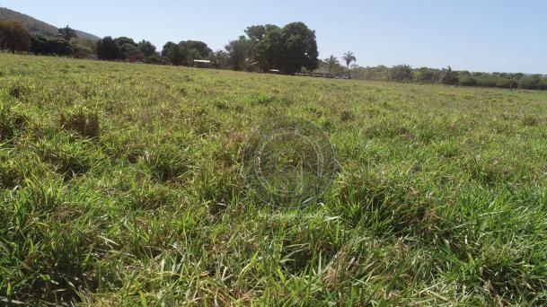 Fazenda para pecuária 185 ha santo antonio leverger - Foto 10