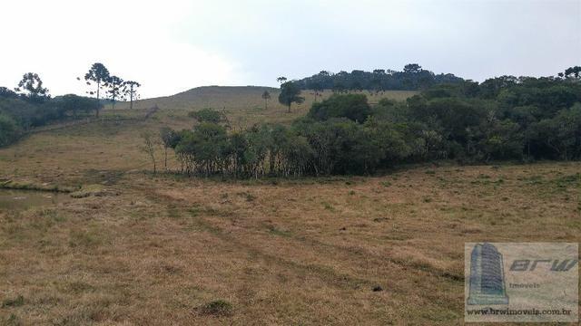 Fazenda 494.000m²(49,4 hectares) em Capão Alto SC - Foto 11