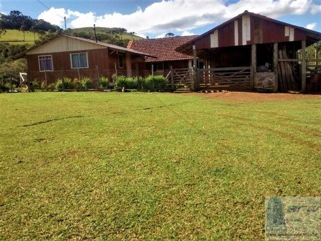 Fazenda 494.000m²(49,4 hectares) em Capão Alto SC - Foto 4