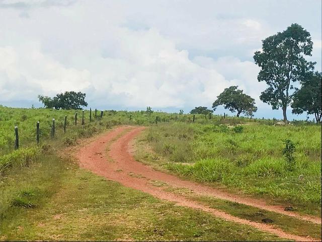 Fazenda 354,hectares - Foto 12