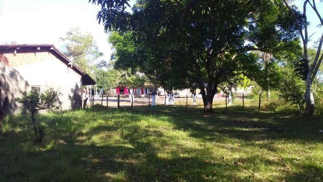 Vende-se Sítio em Santa Rita - Foto 2