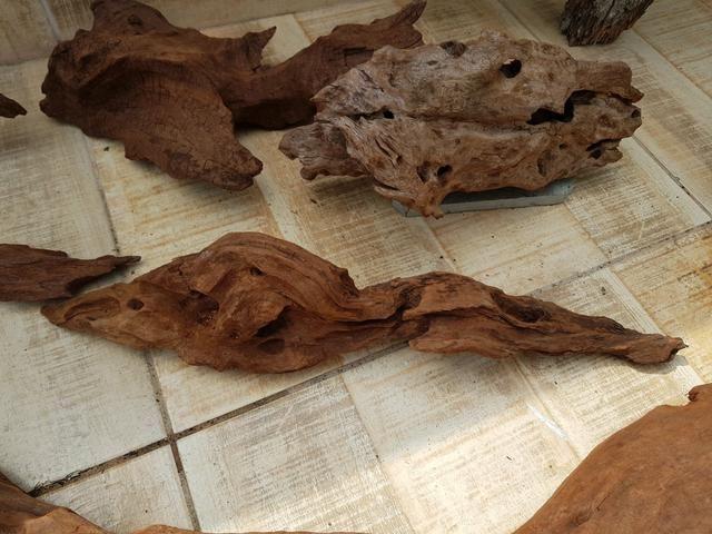Aquarismo decoração de troncos - Foto 2