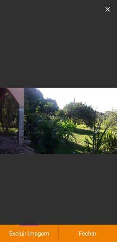 Uma linda terra proximo a Porto Acre - Foto 3