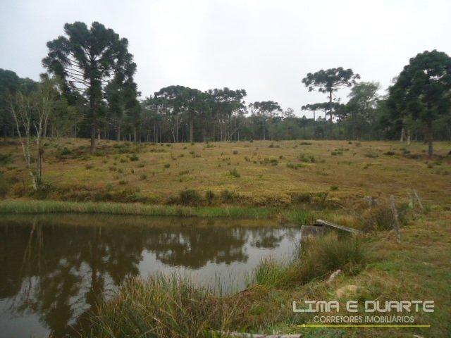 Chácara à venda em Bituvinha, Mafra cod:216CH - Foto 19