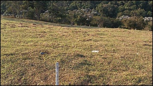 Vendo um lindo terreno de 600m2, próximo há - Foto 5