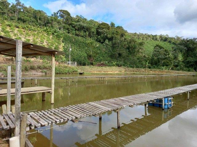Vendo propriedade rural de 42 mil m2 em Alto Paraju - Domingos Martins ES  - Foto 3
