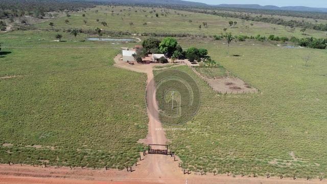 Fazenda para pecuária 185 ha santo antonio leverger