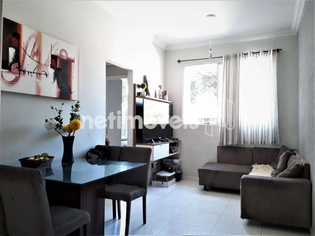Apartamento à venda com 2 dormitórios em Glória, Belo horizonte cod:753033