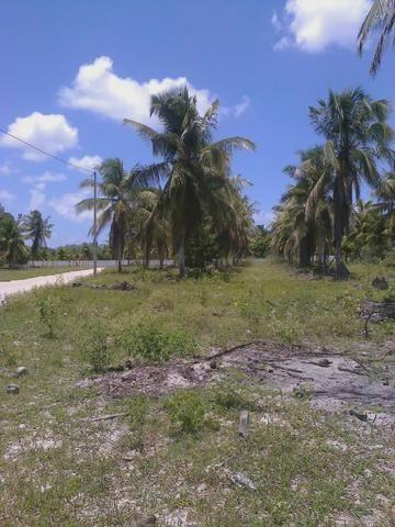 Vendo terreno (1000m²) no Parque Santa Ismênia - Macaíba. - Foto 2