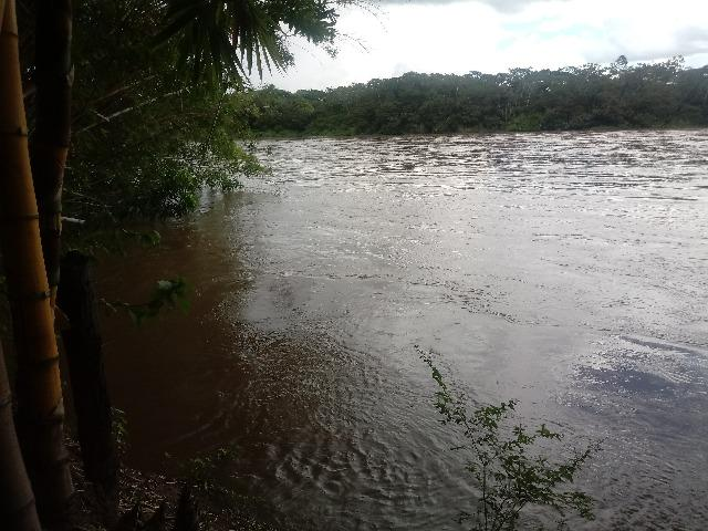 Vendo Chácara - Entre Guia e Acorizal - Rio Cuiabá - Foto 7