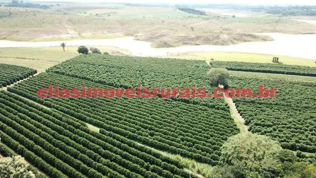 Fazenda de café - 110.000 pés - Patrocínio - MG - Foto 11