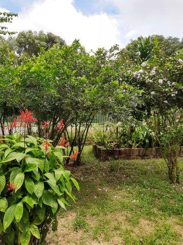 Chácara em Rio Branco - Foto 15