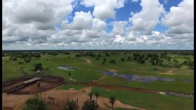VENDA | Fazenda, em ZONA RURAL, CORUMBÁ - Foto 8