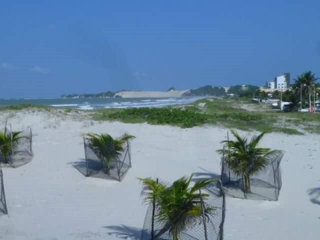 Sobrado, Genipabu, Beira Mar, 5 Quartos, Construção 335m2, Terreno 562m2, Espaço Gourmet - Foto 6