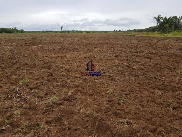 Fazenda à venda, por R$ 25.000.000 - Zona Rural - Humaita/AM - Foto 9