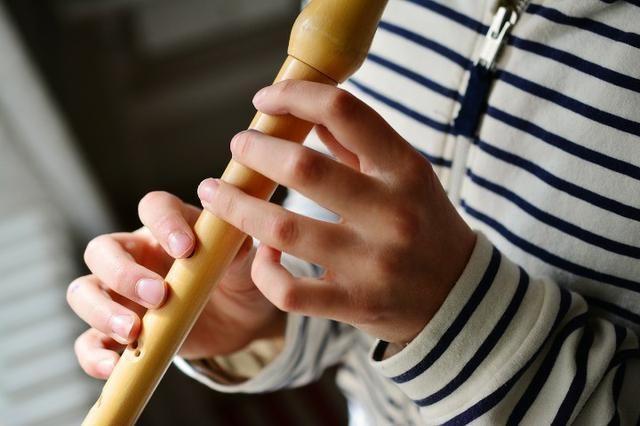 Curso Flauta Doce do Zero - R$ 97,00