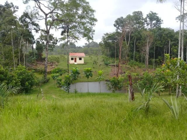 Vende-se Chácara Sentindo Acre,Com Água Natural - Foto 4