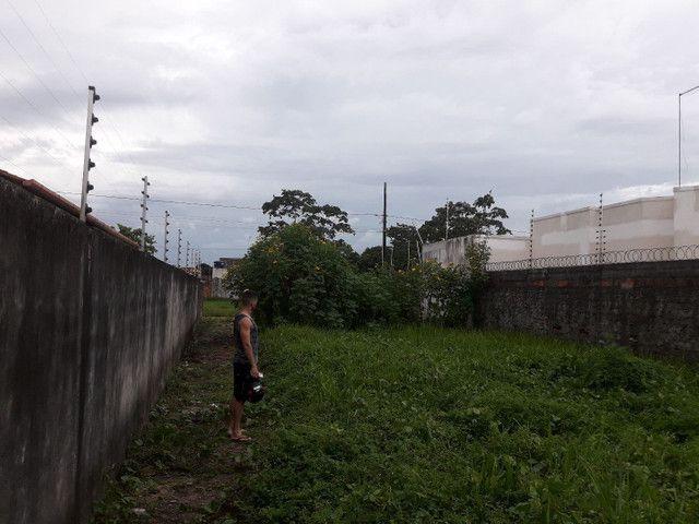 Terreno 12 por 48 murado - Foto 3