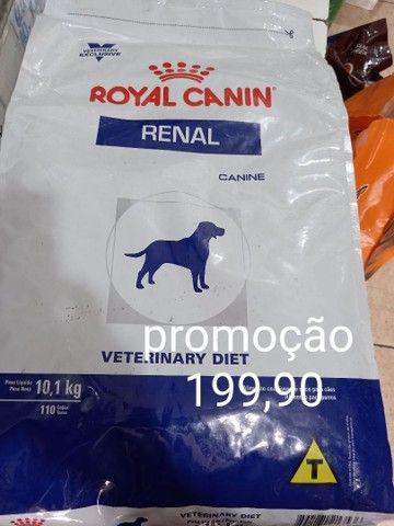 Ração Royal canin renal 10kg