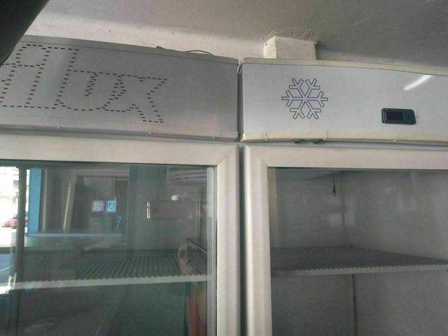 Refrigerador Frilux Vcf 550 2