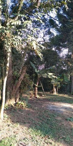 Área Colônia Zacarias - Foto 13