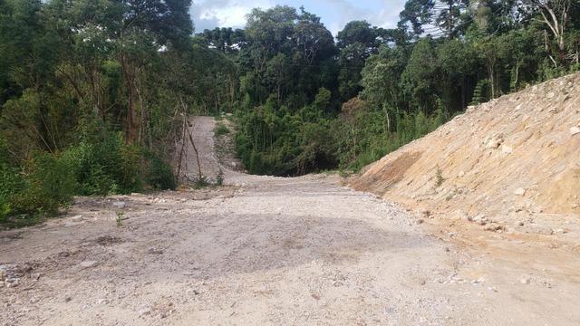 Chácara Agudos do Sul - 50 mts da Br c/ Tanque e rio - Foto 13