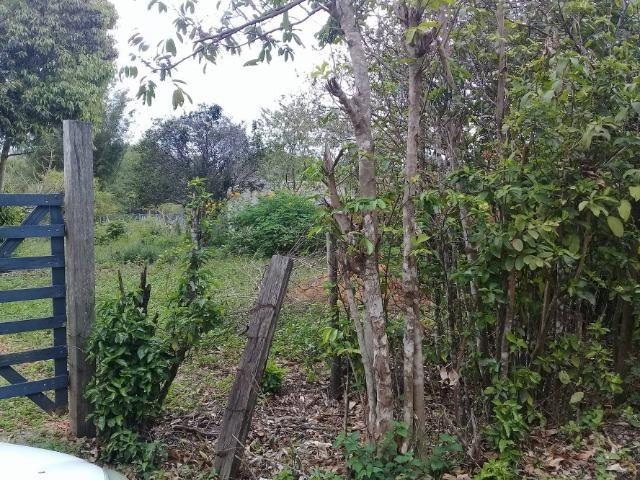Sítio no bairro Chavão/Santo Antonio, Cabo Frio-RJ. 6.000m² - Foto 19