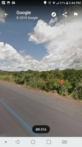 Vendo 03 hectares de terra - Foto 2