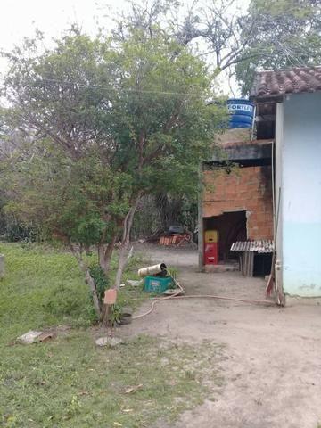 Sítio no bairro Chavão/Santo Antonio, Cabo Frio-RJ. 6.000m² - Foto 9