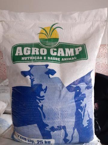 Vendo sal mineral para gado de engorda - Foto 2
