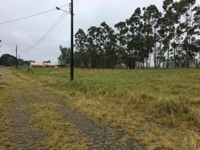 Terreno para venda em imbituba, alto arroio - Foto 9