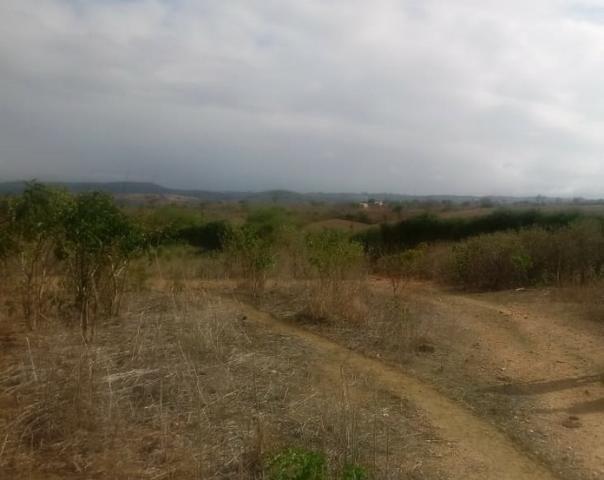 Ótima propriedade de 120 hectares, 70% plana, em Gravatá-PE. Por apenas R$ 780 mil! - Foto 6
