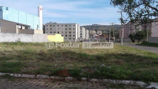 Terreno à venda em Jardim leopoldina, Porto alegre cod:186462