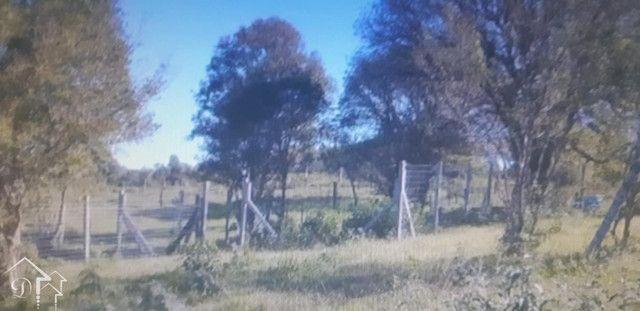 Terreno à venda em Vila etelvina, Itaara cod:10218 - Foto 13