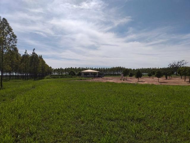 Fazenda para Soja com 6.200 hectares - Foto 5