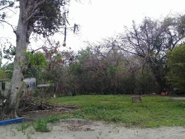 Sítio no bairro Chavão/Santo Antonio, Cabo Frio-RJ. 6.000m² - Foto 14