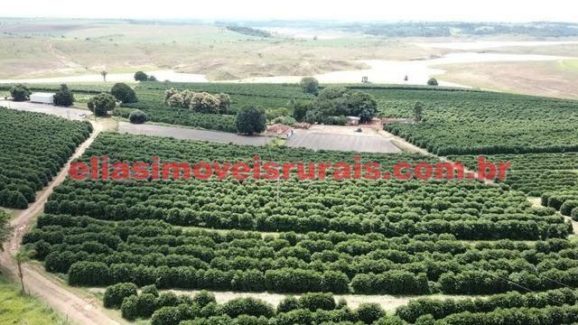 Fazenda de café - 110.000 pés - Patrocínio - MG - Foto 7