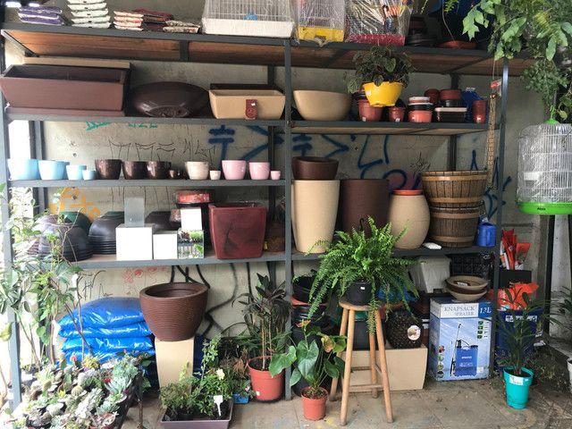 Agropecuária e floricultura - Foto 3