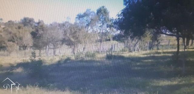 Terreno à venda em Vila etelvina, Itaara cod:10218 - Foto 14