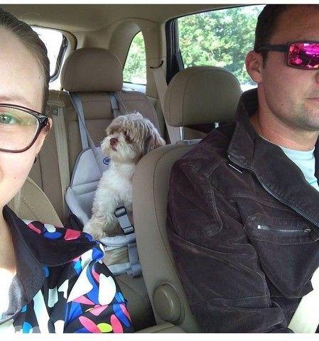 Assento/ Cadeirinha de transporte Tubline Transpet Cinza para Cães e Gatos<br><br> - Foto 2