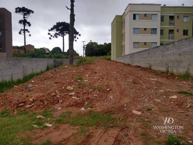 Terreno à venda, 4990 m² por r$ 1.700.000,00 - santo antônio - são josé dos pinhais/pr - Foto 3