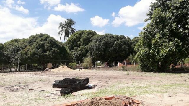 Casa QUATRO BOCAS PARACURU - Foto 10