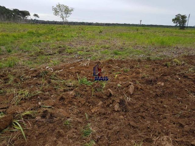 Fazenda à venda, por R$ 25.000.000 - Zona Rural - Humaita/AM - Foto 12