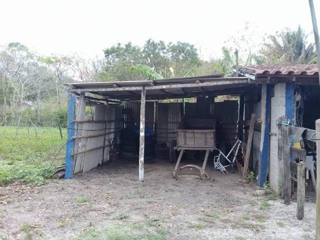 Sítio no bairro Chavão/Santo Antonio, Cabo Frio-RJ. 6.000m² - Foto 10